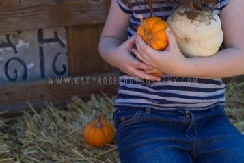 Copyright 2014 Katy Rose Photography http://www.katyrosephotography.com