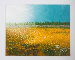 Field of Sunshine