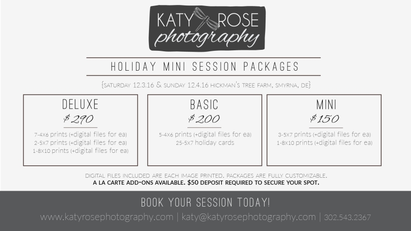 holiday-mini-packages