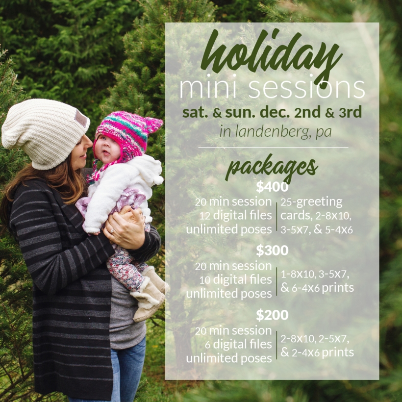 Holiday Mini Sessions Packages 2017