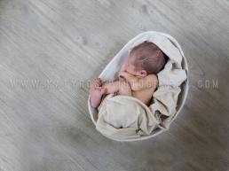 KRP Babies-Anton Michael 3