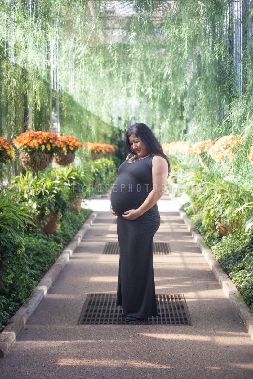 KRP Babies-Baby Knotts-20171116-7888