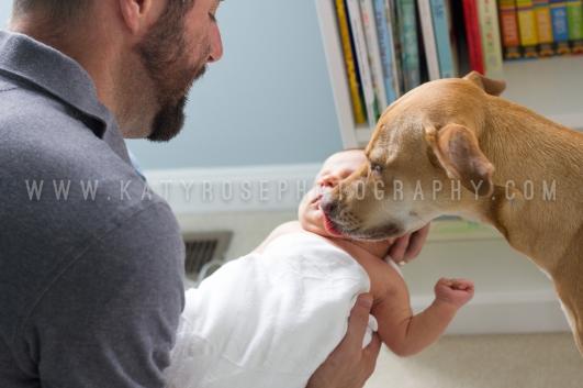 KRP Babies-Brady-IMG_5369