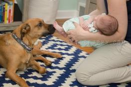 KRP Babies-Scarlett Emma-6116
